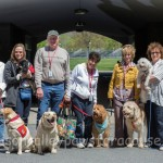 HUDSON VALLEY PAWS FOR A CAUSE BRING JOY