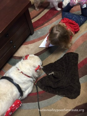 UNIFIED SPORTS PROGRAM GETS PET THERAPY FUN