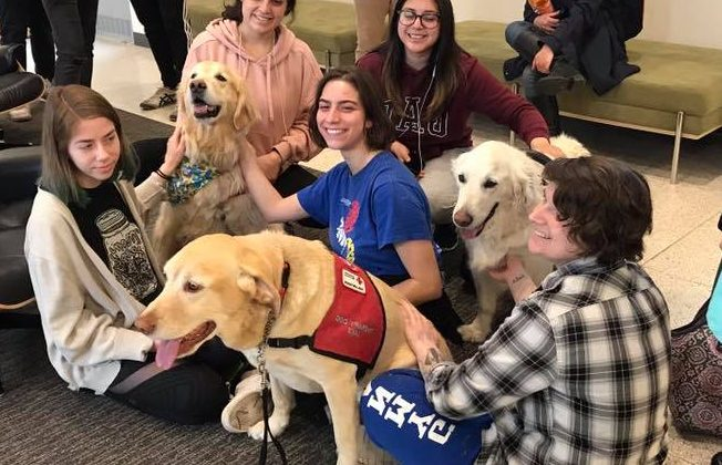 NEW PALTZ STUDENTS ARE PAW-SOME!