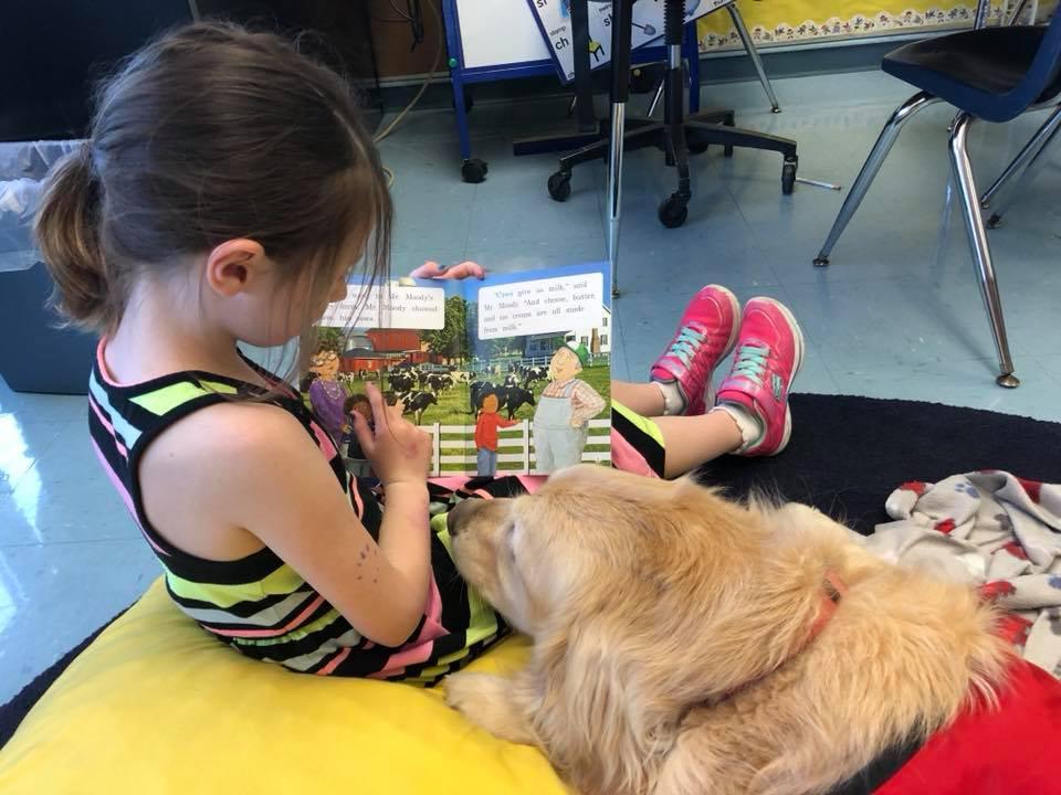 READING IS SEAMUS' FAVORITE ACTIVITY