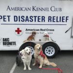 PAWS OF WAR PARTNERS WITH PAWS FOR A CAUSE